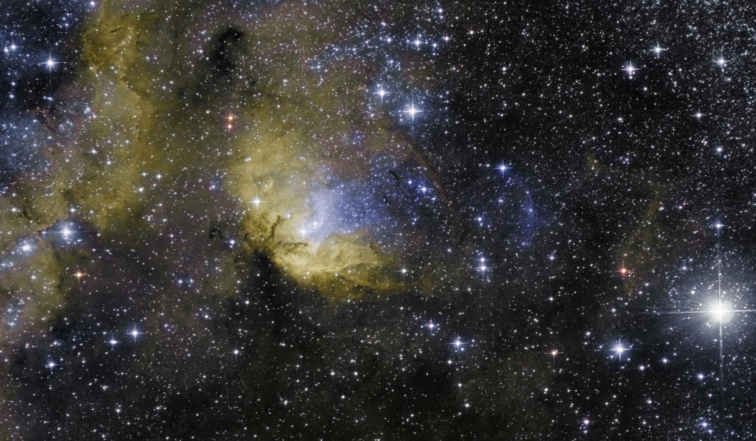Sh2-101 Tulipán-köd és a Cygnus X-1 fekete lyuk lökéshullámfrontja