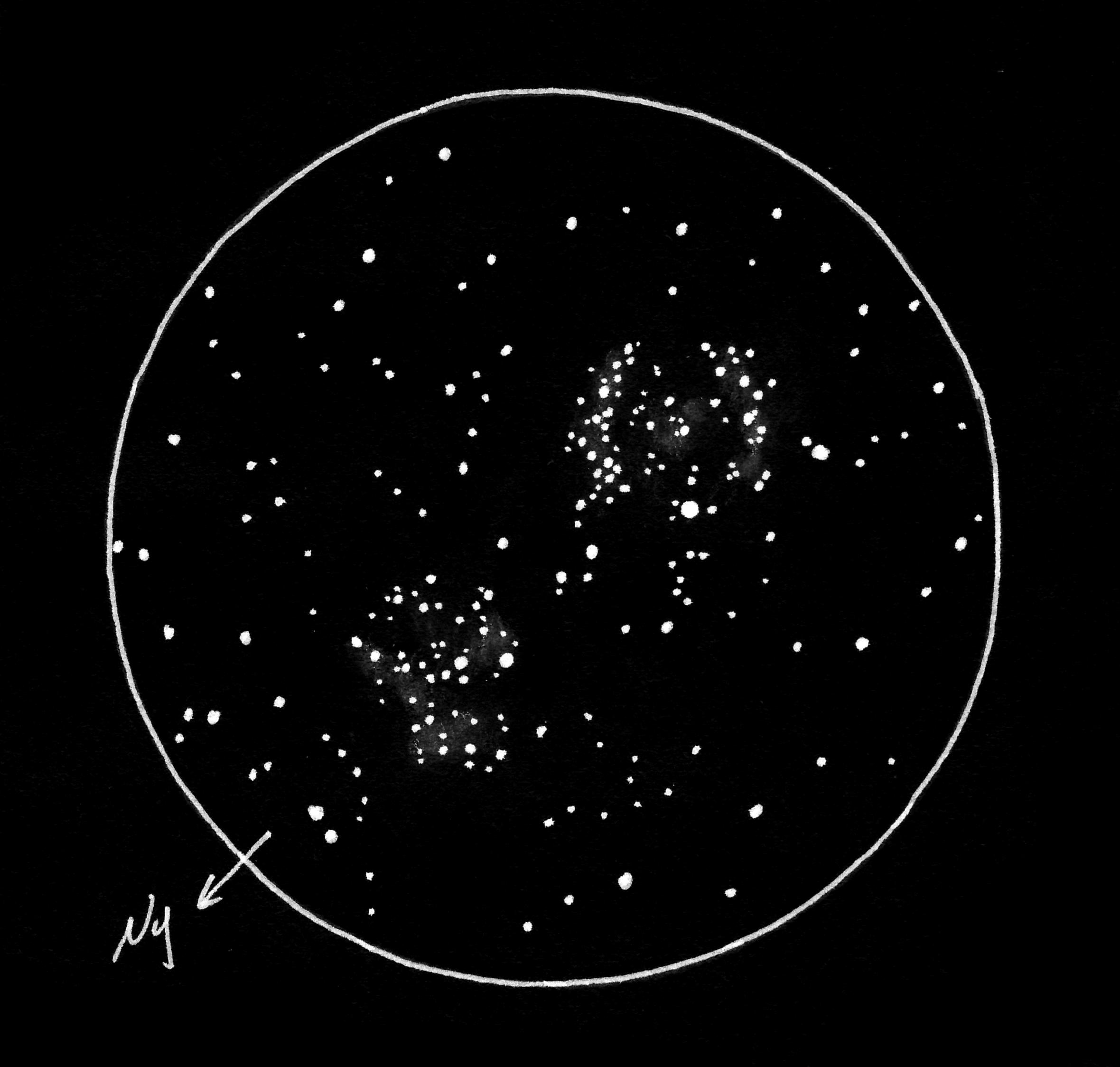 NGC 884, NGC 869